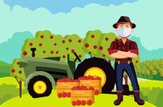 A cartilha ilustrada orienta sobre medidas de higiene no contexto do agricultura (Imagem: divulgação)