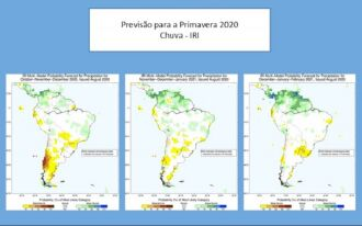 Modelo disponibilizado pelo International Research Institute for Climate Prediction (IRI) indica início do período de La Niña (Foto: - IRI)