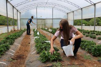 Agronomia, Gestão do Agronegócio e Medicina Veterinária integram a área de Ciências Agrárias (Foto: Leonardo Andreoli)