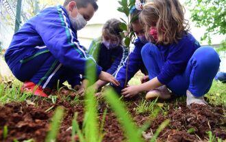 Os alunos também aprenderam sobre a importância do recurso natural (Foto: Diogo Zanatta/Divulgação PMPF)