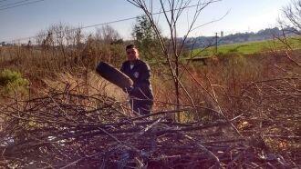 Mais de mil pneus foram eliminados nas visitas da Vigilância Ambiental