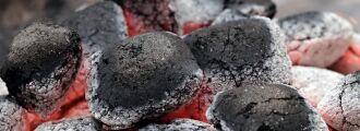 Carvão e gordura: resíduos contaminantes orgânicos e inorgânicos que podem causar doenças