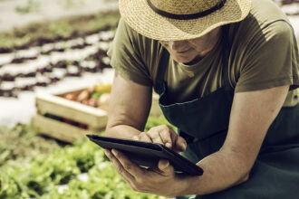 65,4% dos produtores gaúchos ouvidos revelaram ter adquirido insumos ou acessados mercados via web