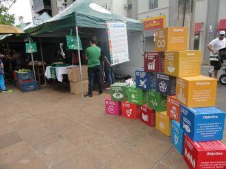 Sacolas ecológicas são vendidas na Feira do Produtor de Carazinho