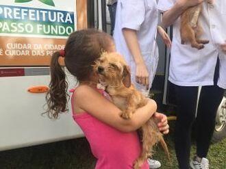 Programa auxilia no controle de animais abandonados na cidade