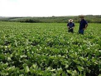 90 mil estoques empregatícios são dedicados às atividades do agronegócio nessa área territorial