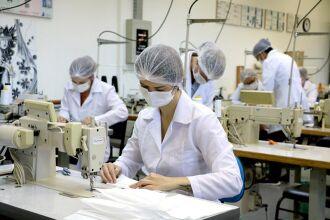 Todo o processo seguirá protocolos de cuidado com a esterilização do material