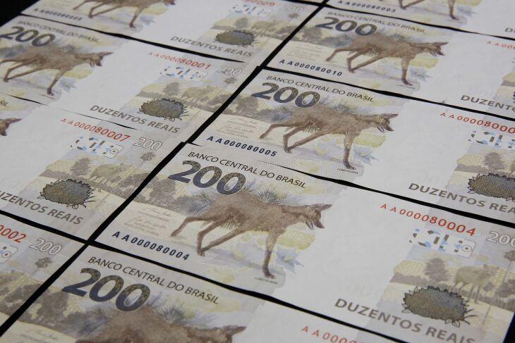 O lobo-guará está na categoria vulnerável em relação à elevada ameaça de extinção (Imagem: Divulgação/Banco Central)