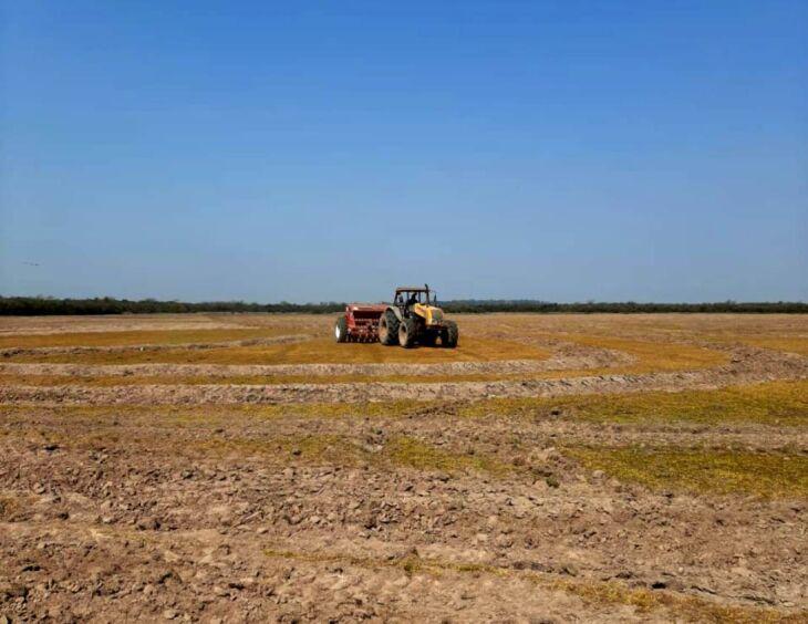 Preparativos para o plantio da safra de arroz 2020/2021 estão em andamento em diferentes regiões (Foto: Divulgação Irga)