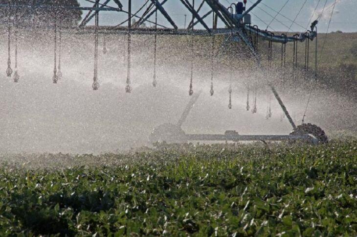 Irrigação é importante instrumento para manter a produção em períodos de pouca chuva - (Foto: Fernando Dias/Divulgação)