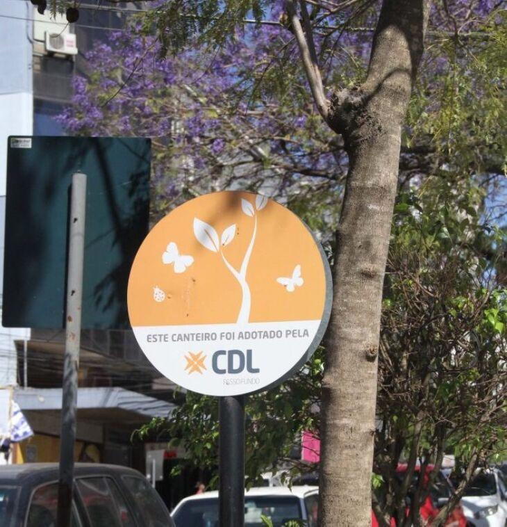 Canteiro recebeu melhorias (Foto: Divulgação/CDL)