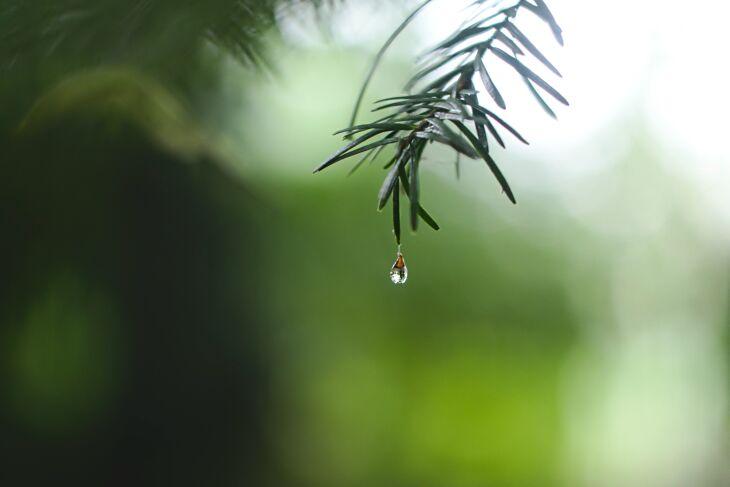 Entre esta quinta-feira e domingo o tempo permanecerá seco (Foto: Ed Leszczynskl/Unsplash)
