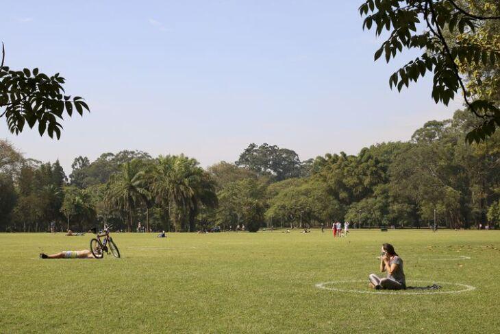 Meio ambiente deve ser uma das principais preocupações dos novos prefeitos (Foto: Rovena Rosa/Agência Brasil)