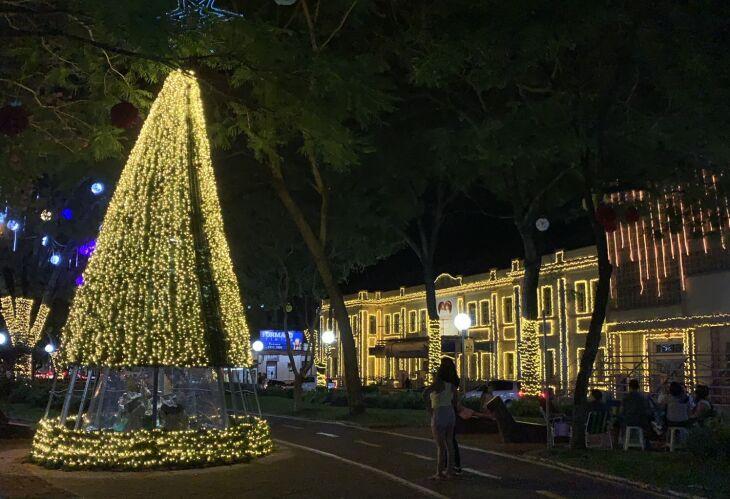 Luzes estarão acessas de 6 de dezembro a 6 de janeiro (Foto: Divulgação)