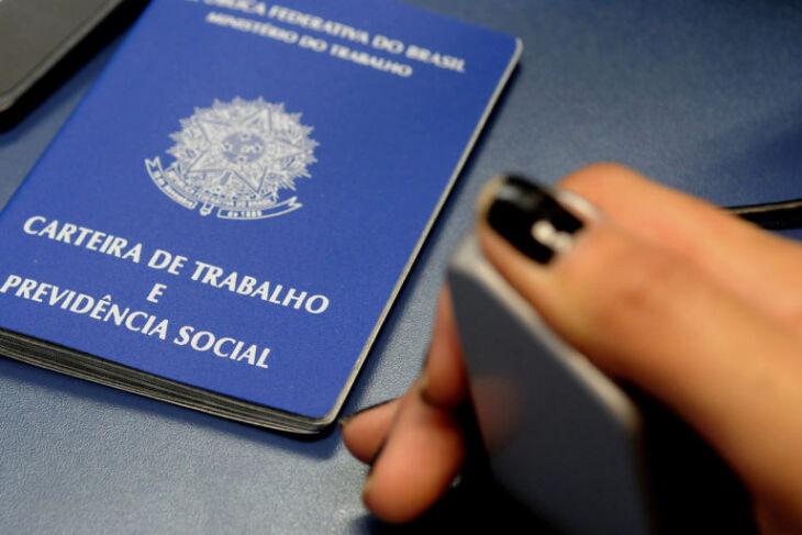 A pesquisa contabiliza 29,8 milhões de trabalhadores em empregos com carteira assinada no setor privado (Foto: Tony Winston/Agência Brasília)