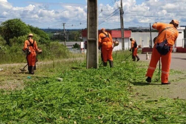 Serviços de capina, roçada, revisão da iluminação e manutenção dos abrigos de ônibus também foram realizados (Foto: Divulgação/PMPF)