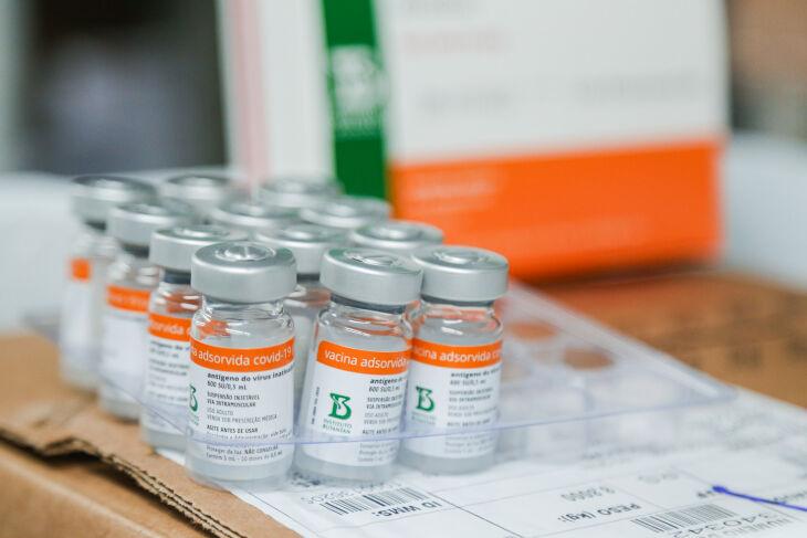 Esta é a oitava remessa de vacinas contra a Covid-19 (Foto: Felipe Dalla Valle/Palácio Piratini)