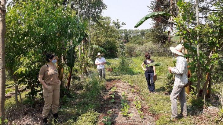 Assessoramento técnico ensinou como implementar as melhores práticas no uso sustentável de produtos originários da flora nativa ( Foto: Alvir Longui/Divulgação/Sema)