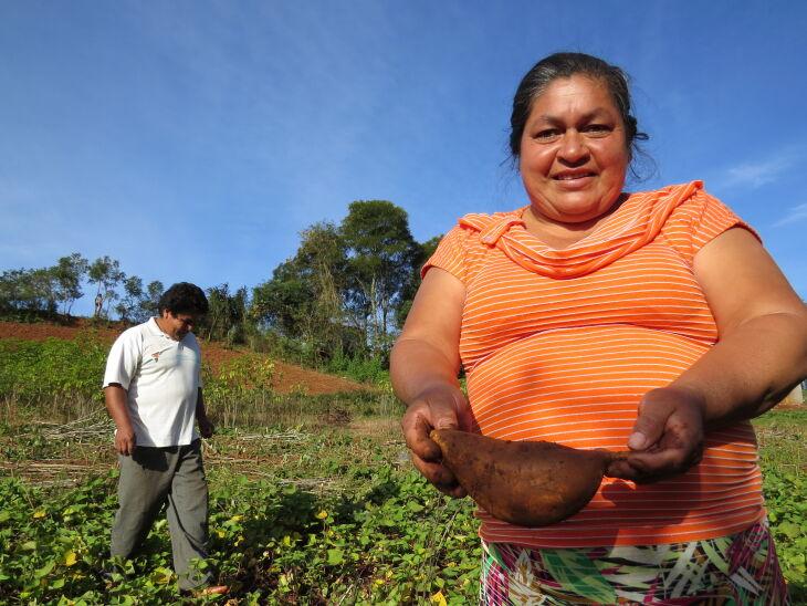 Cada família indígena receberá um Kit de sementes de hortaliças (Foto: Divulgação)