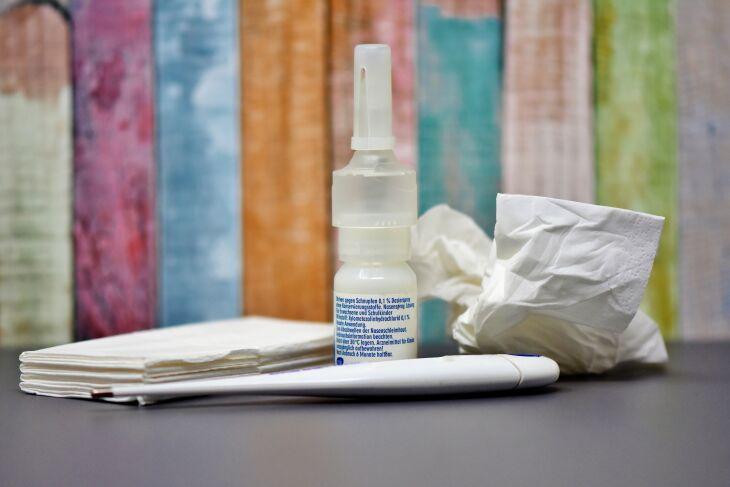 Nariz limpo reduz a inflamações e facilita a expulsão de partículas irritantes (Foto – Pixabay)