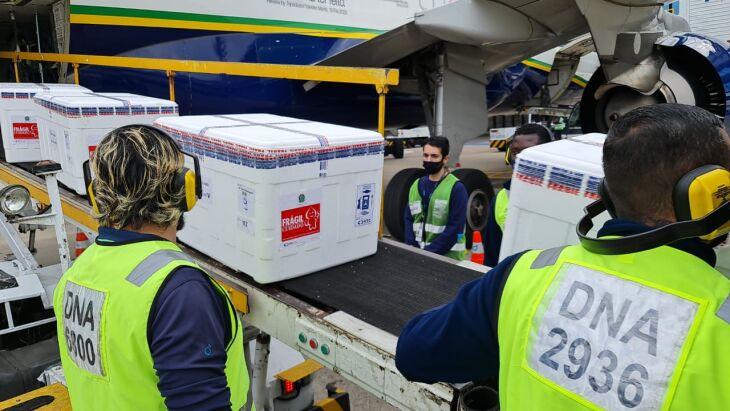 Novo lote chegou nesta quarta feira (2) (Foto: Itamar Aguiar / Palácio Piratini)