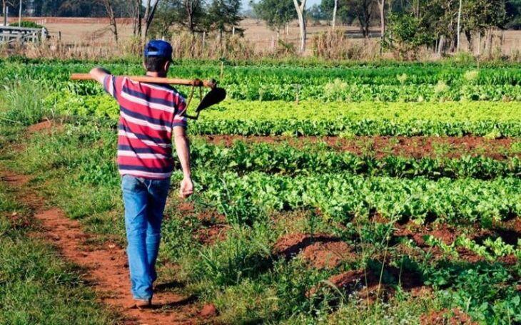 Agricultura familiar emprega 21,5 mil pessoas na área do Corede Produção (Foto: Arquivo/Agência Brasil) (Foto: Divulgação/ON)
