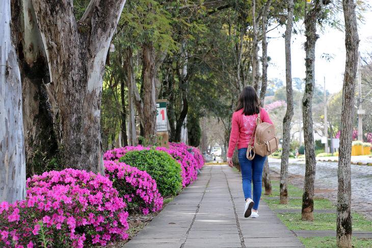 As vagas são para ingresso no primeiro semestre de 2022 (Foto: Divulgação/UPF)