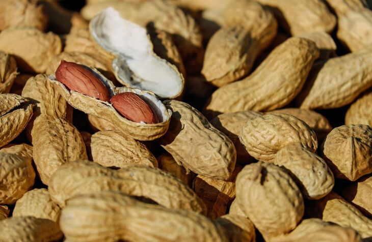 Amendoim: anafilaxia potencialmente letal